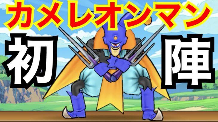 【ドラクエウォーク】カメレオンマン初陣!