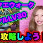 【ドラクエウォーク】ベリアルLV30初見攻略!無課金ギャル勇者がいく!
